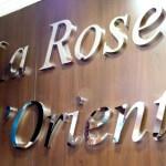 Enseigne intérieure composé de lettres inox poli - Prêt à porter oriental - La Rose d'Orient