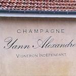 Enseignes à lettres stylisées - Champagne Yann ALEXANDRE