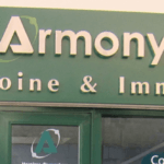 Enseigne d'agence de conseil immobilier - Armony-pontoise-95